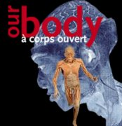 our-body
