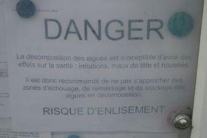 Alge-advarsel